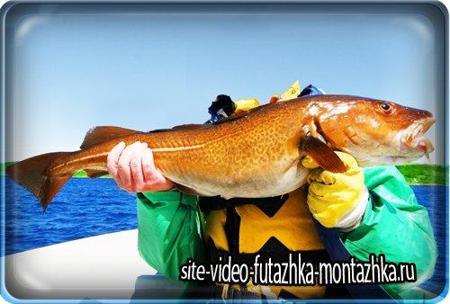 Фотошаблон мужской - Профессиональная рыбалка