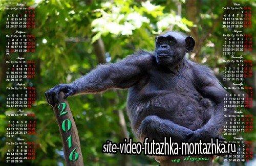 На 2016 год календарь - Год обезьяны