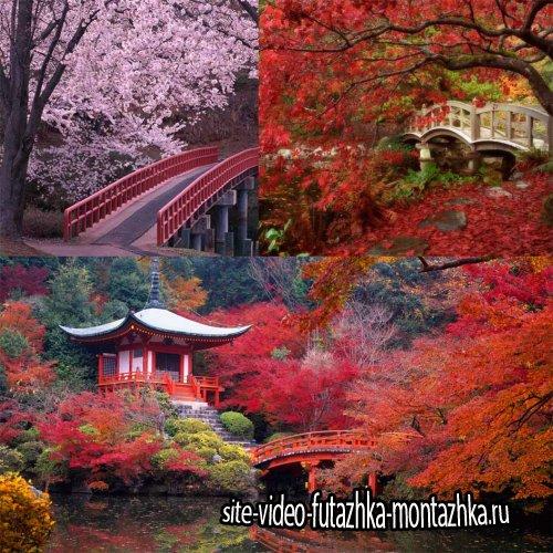 Китай и Япония - пейзажи (преимущественно осень, весна)