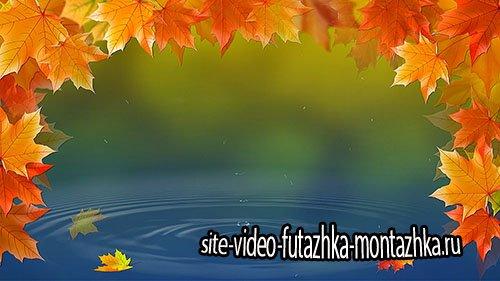 Футаж - Кленовые листья