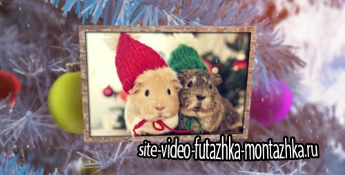 New Year Photo Album - Project for After Effects (Videohive)