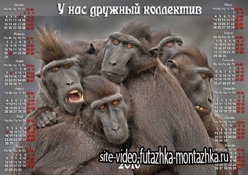 Календарь 2016 - Коллектив у нас дружный