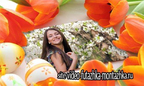 Рамка psd - Фотография среди тюльпанов
