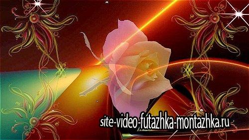 Футаж с розой HD