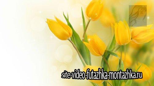 Футажи весенние цветочные (footages)