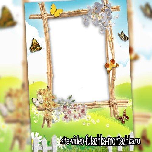 Рамка для оформления - Весенние бабочки