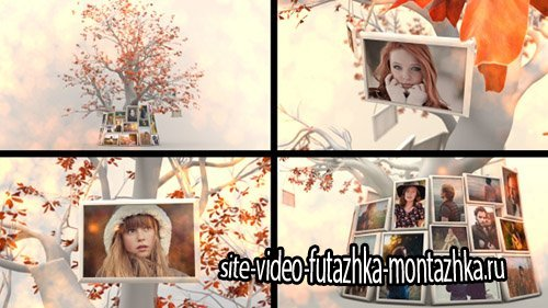 Memory Tree Slideshow - Project for After Effects (Videohive)