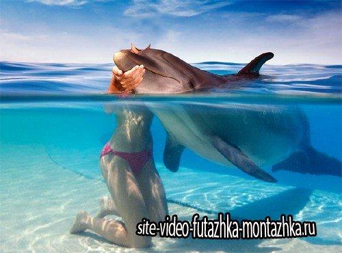 PSD шаблон для девушек - Поплавать с дельфином