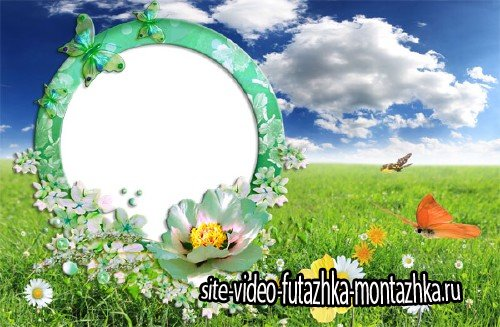 Рамка для фотографии - Зеленая поляна с бабочками