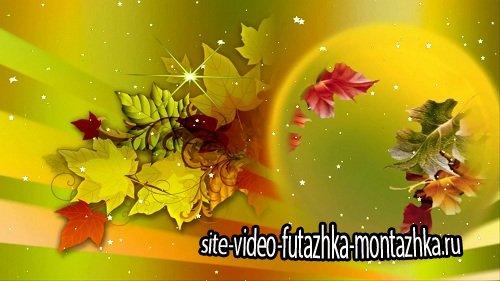 Видео футаж HD - Autumn footage