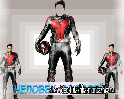 Шаблон для фото - Человек - муравей