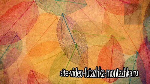 Осенние футажи для фона - Autumn footages