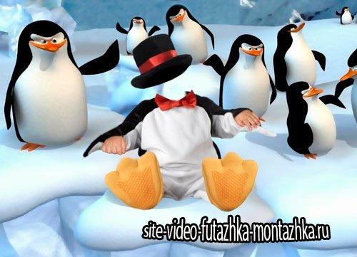 Шаблон для фото - Пингвиненок с друзьями