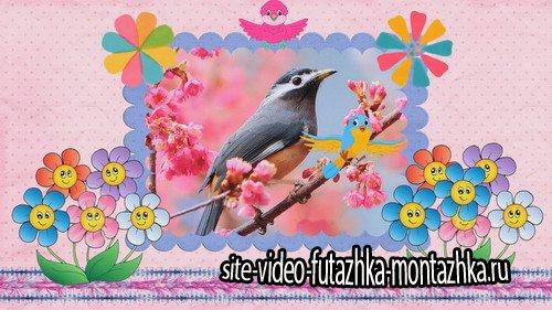 Проект ProShow Producer - About Birds