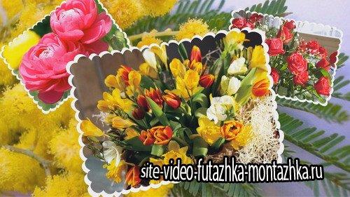 Проект ProShow Producer - 8 Марта -Цветы для Вас