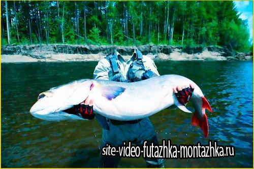 Фотошаблон для фотошопа - Стоящий улов