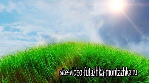 Видео заставка - По зеленой планете