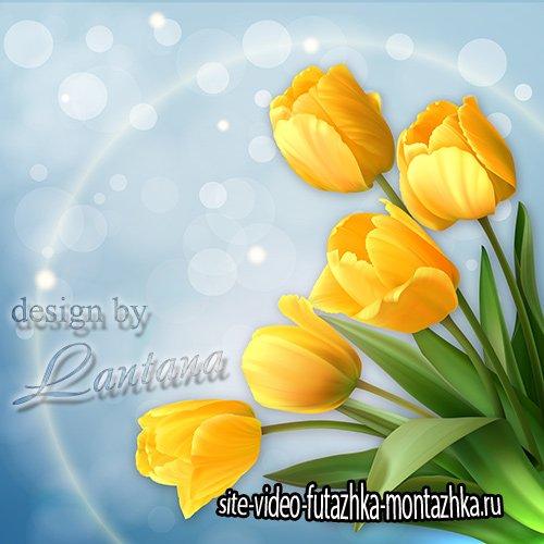PSD исходник - Тюльпаны поют о весне мелодию желтого света