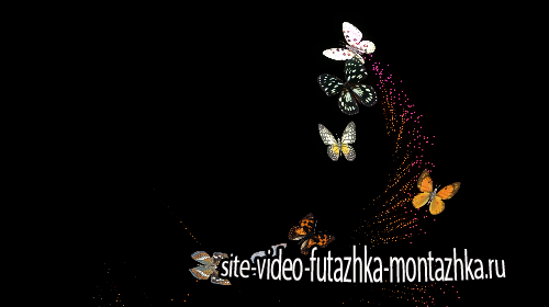 футаж с альфа каналом-Бабочки
