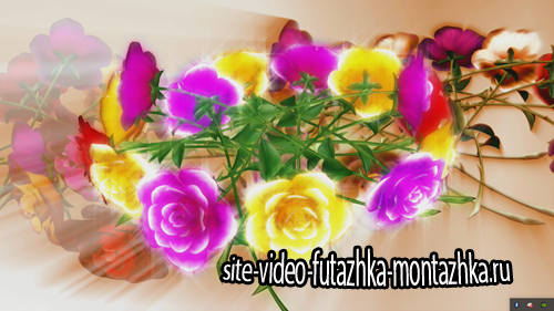 фоновый футаж-Цветы