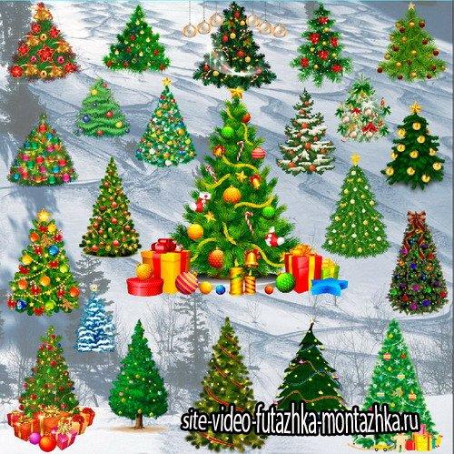 Клипарт Подборка украшенных новогодних елок