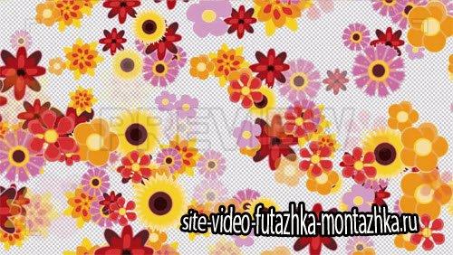 футажи переходы-Flowers Transition 4K Motion Graphic